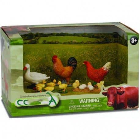 7200 Koleksi Gambar Hewan Ternak Ayam HD
