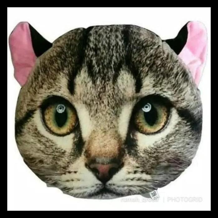 Bantal Boneka Kucing Lucu - Page 4 - Daftar Update Harga Terbaru ... 737154c776
