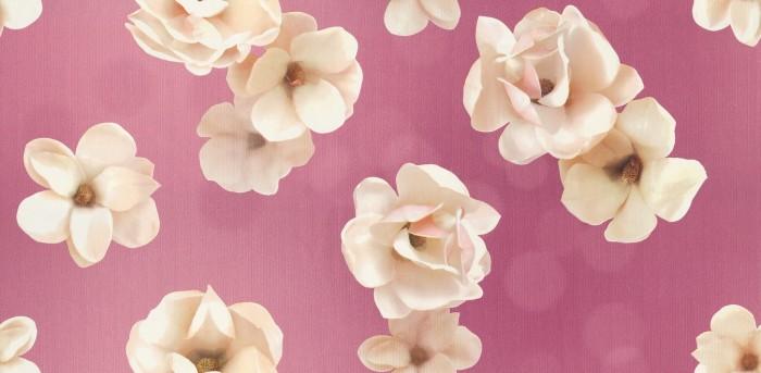 700+ Wallpaper Bunga Pink  Terbaik