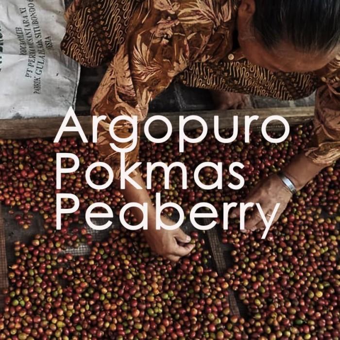 harga Kopi argopuro situbondo natural 500 gram by imaji kopi Tokopedia.com