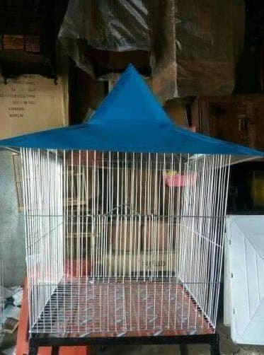 harga New Kandang Burung Beo Ukuran Besar Berkualitas Tokopedia.com