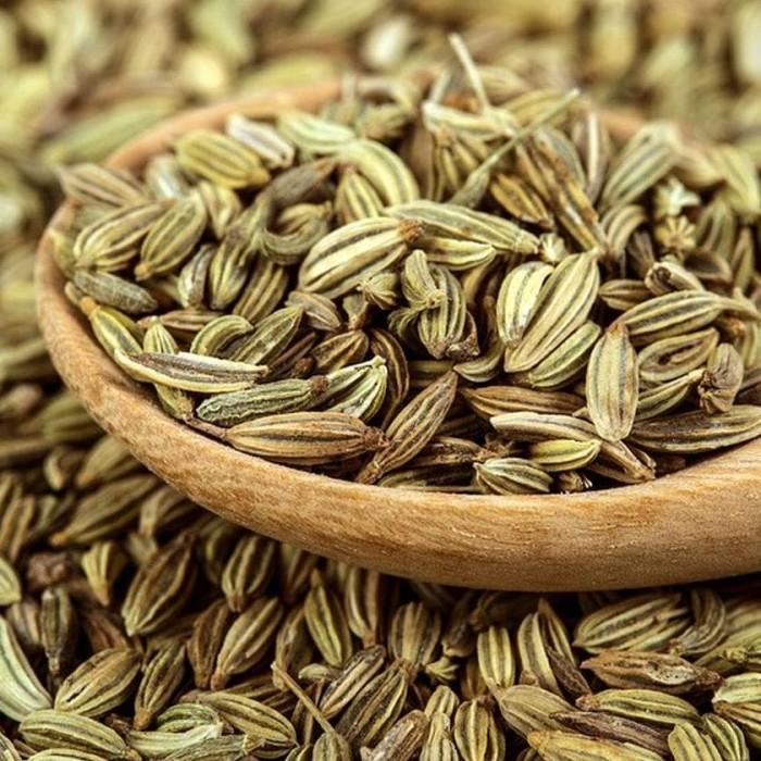 Jual Premium Fennel Seed - Adas Manis - Jintan Manis - Imported ...