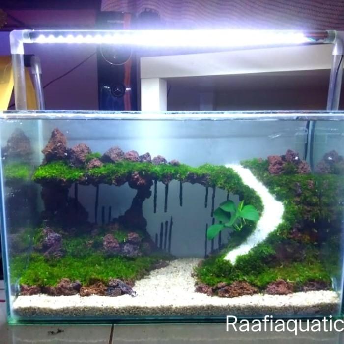 Jual Aquascape Tema Zona Nyaman Jakarta Selatan Raafi Aquatic Tokopedia
