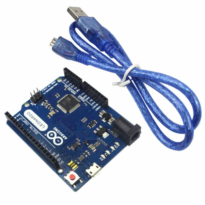Foto Produk Arduino Uno R3 Leonardo Atmega 32U4 + Kabel Micro USB dari RAFTECH