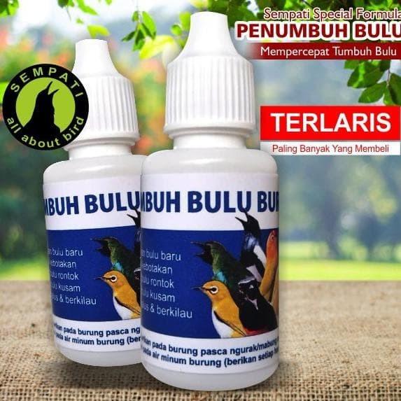 Jual Obat Penumbuh Bulu Burung Sempati Mengatasi Bulu Rontok Patah Mabung Kota Bandung Aidora Tokopedia