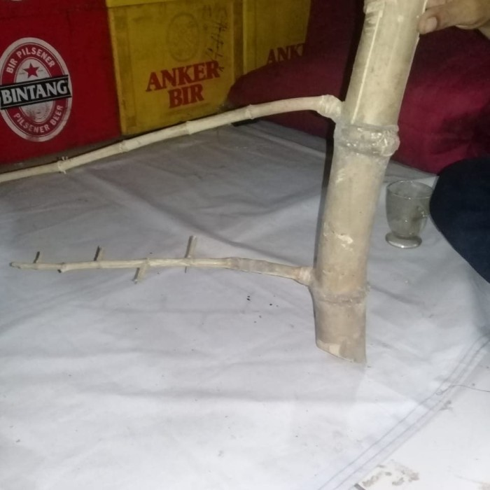 harga Bambu Pring Petuk Asli Antik Tokopedia.com