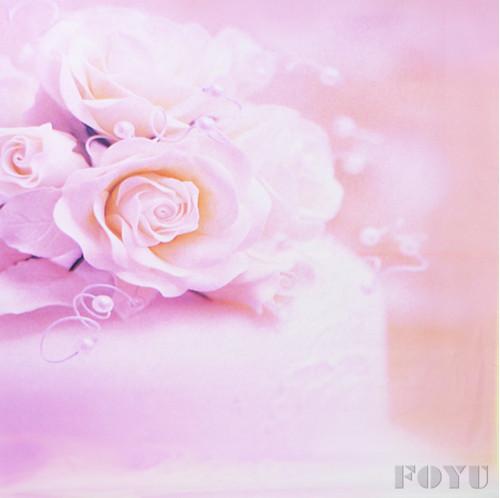 Unduh 420+ Background Mawar Api HD Terbaru