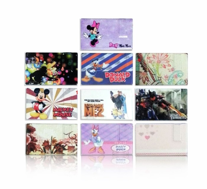 USB Flash Disk Card 8 GB Character