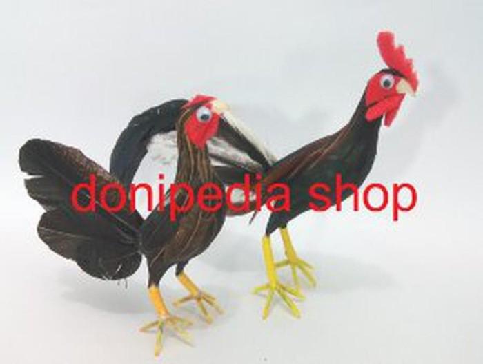 sketsa gambar ayam jantan dan betina