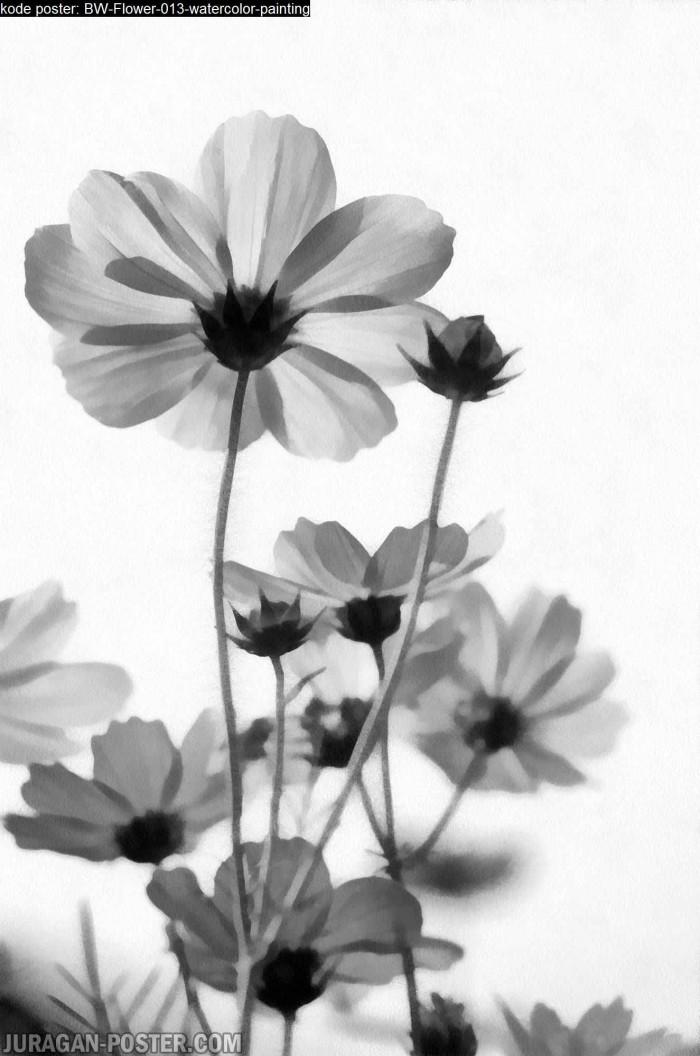 Jual Lukisan Bunga Hitam Putih Minimalis Original Kanvas 013 90x136cm Kab Majalengka Juragan Poster Murah Tokopedia