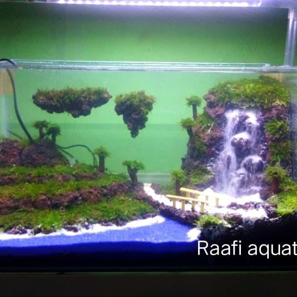 Jual Aquascape Avatar Waterfall Keren Jakarta Selatan Raafi Aquatic Tokopedia