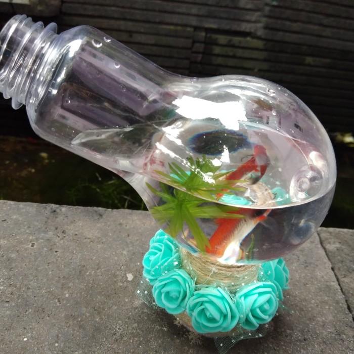 Jual Toples Cupang Unik Aquarium Kab Bekasi Lc Betta Tokopedia
