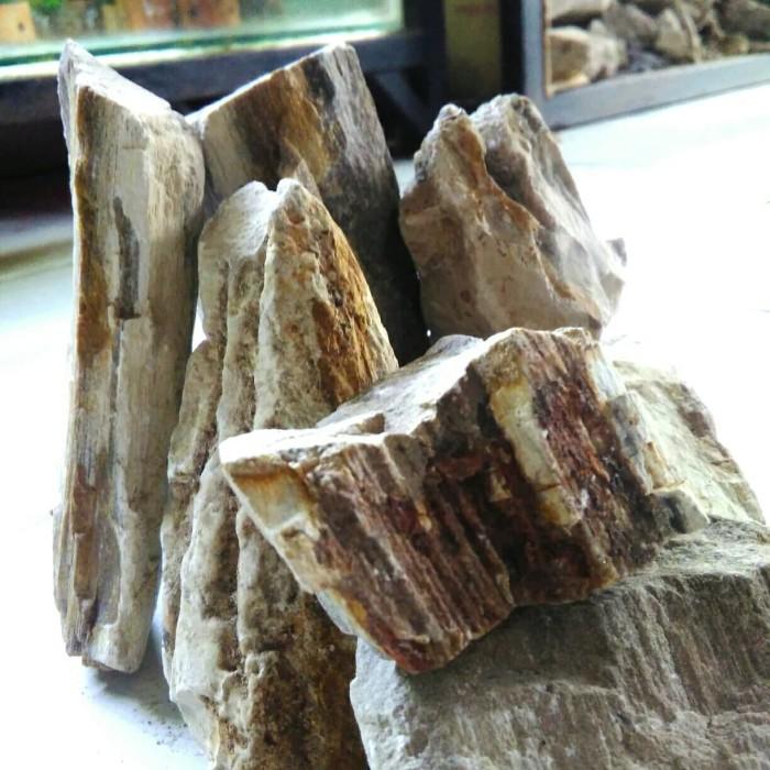 Jual batu fosil kayu untuk hardscape dan aquascape - Kab ...