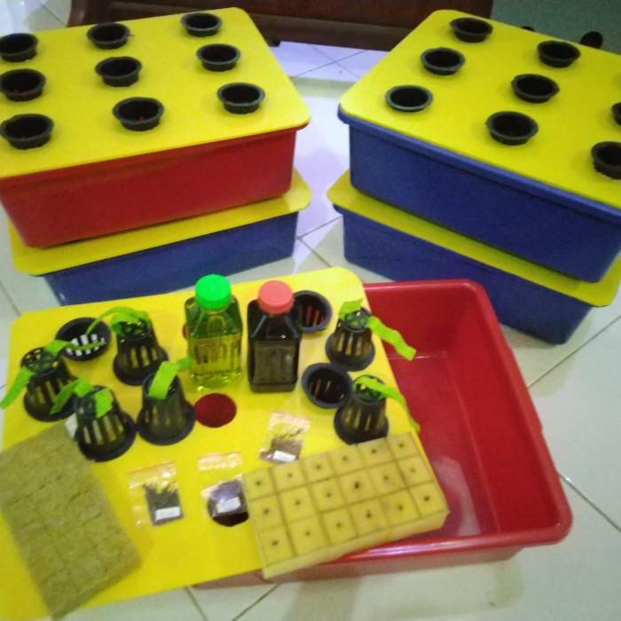 Foto Produk kit starter hidroponik dari Aa818_Hydroponic