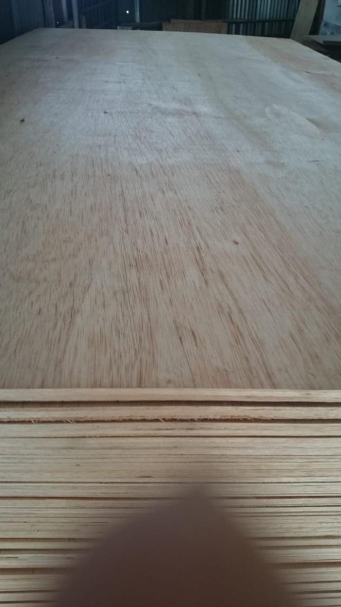 Jual Triplek Plywood Multiplek 9mm Alba Dki Jakarta Surya Agung Triplek Tokopedia
