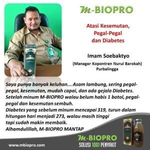 Foto Produk M BIOPRO Obat Diabetes Melistus-Kering-Basah Kencing Manis Mbiopro dari Tasik Store