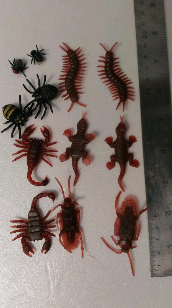 Jual Mainan Kecoa Kelabang Kalajengking Lalat Laba Laba Kadal Campur Murah Jakarta Utara Tamia Shop