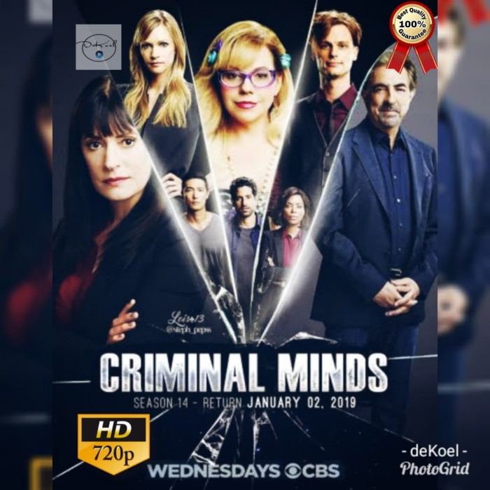 harga Serial tv barat criminal minds season 14 complete Tokopedia.com