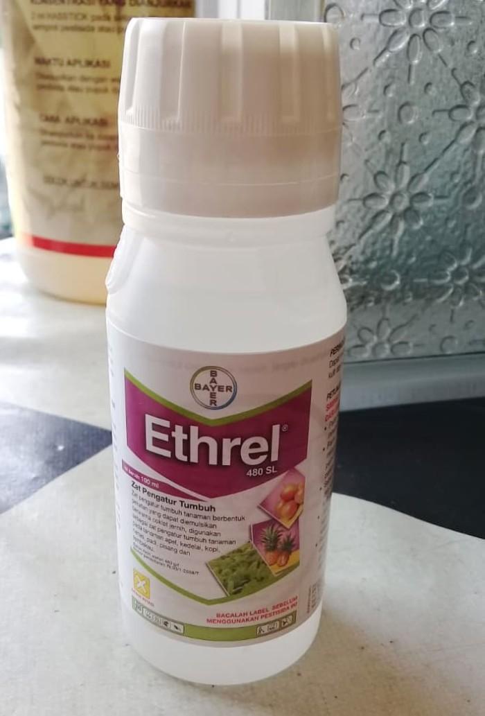 Zat Pengatur Tumbuh / ZPT Ethrel 100 ML
