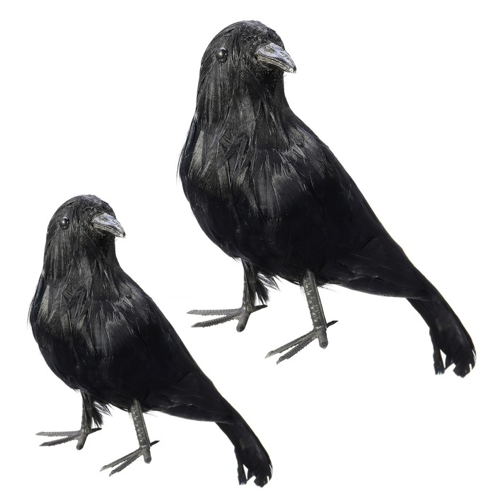 CROW RAVEN BLACKBIRD VINYL DECAL STICKER BIRD LAPTOP WINDOW CHOOSE COLOR