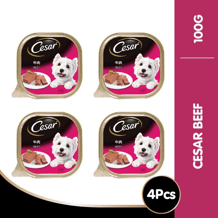 harga [isi 4 pack] cesar beef 100gr makanan anjing basah super premium Tokopedia.com