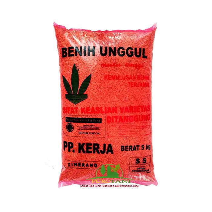 Foto Produk Benih Padi Ciherang PP Kerja 5 Kg dari Purotani