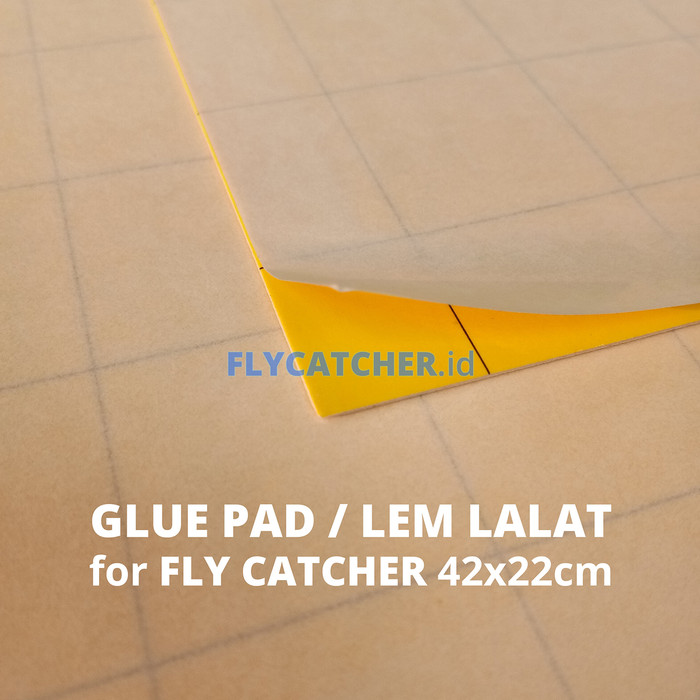 harga Glue pad / glue board / lem serangga flycatcher size 42x22cm Tokopedia.com