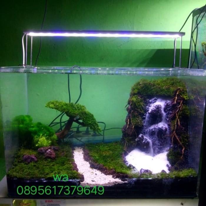 Jual Aquascape Waterfall Simple Bonsai Jakarta Selatan Raafi Aquatic Tokopedia