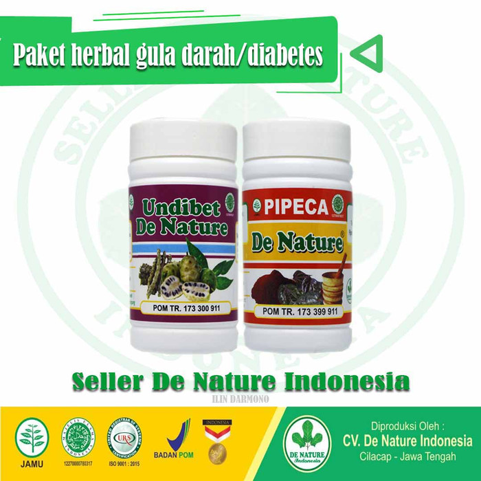 obat alami diabetes palidez ampuh indonesia