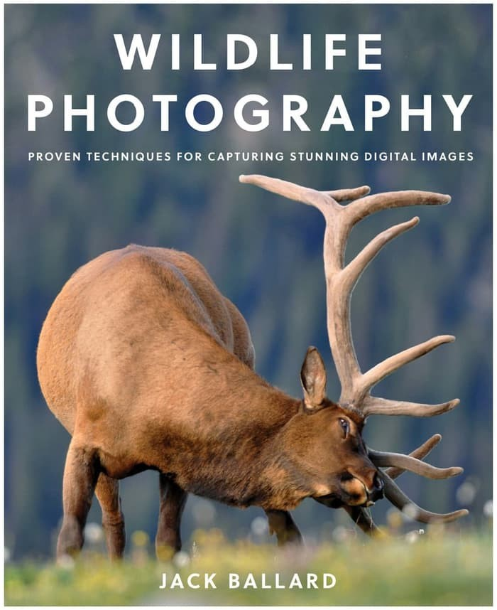 Wildlife Photography: Proven Techniques for Capturing... [eBook]