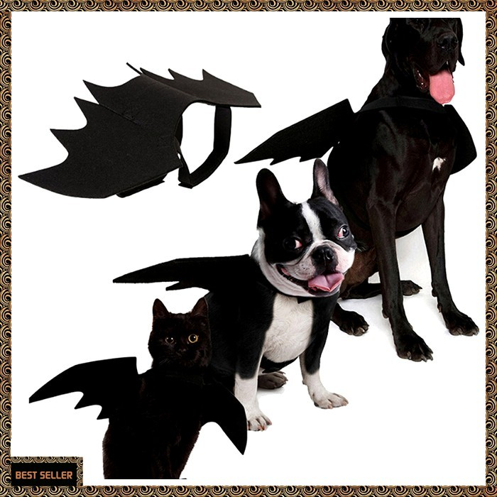Jual Halloween Cat Bat Wings Collar Harness Decor Puppy Pet Cat Black Bat Jakarta Barat Wish Do Shopping Tokopedia