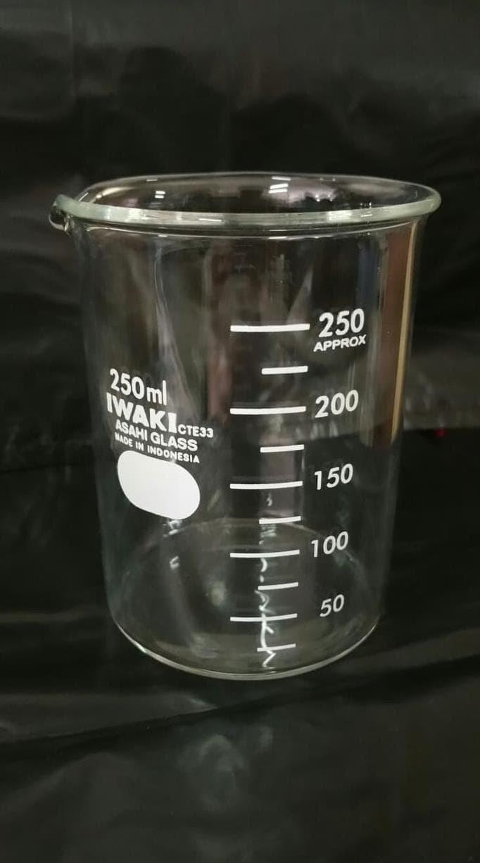 Jual HOT SALE Beaker Glass Gelas Piala Laboratorium 250ml Iwaki Asahi Jakarta Pusat Nitawijayanti7427 Shop