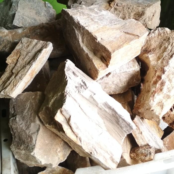 Jual batu fosil aquarium aquascape - Kab. Tangerang ...