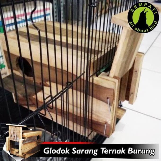 Jual Glodok Kaca Sarang Tempat Bertelur Burung Lovebird Jakarta Timur Arsa Affandi Tokopedia