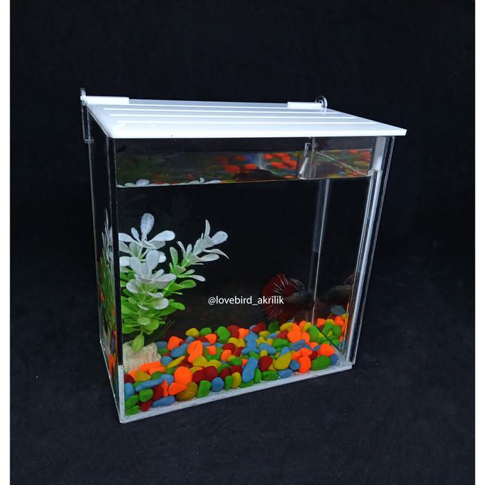 Jual Aquarium Ikan Hias Aquarium Mini Akrilik Betta Fish Acrylic Soliter Kab Gresik Mak Aji Tokopedia
