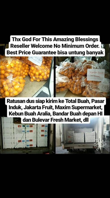 Jual Buah Jeruk Import Murcot Manis Harga DIJAMIN MURAH DIBAWAH PASARAN Jakarta Barat Agung Gumelar0