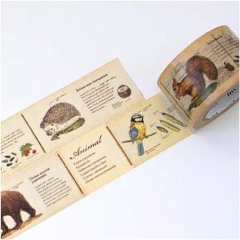 Foto Produk MTEX1P36 (30mm) encyclopedia / animal dari gudily
