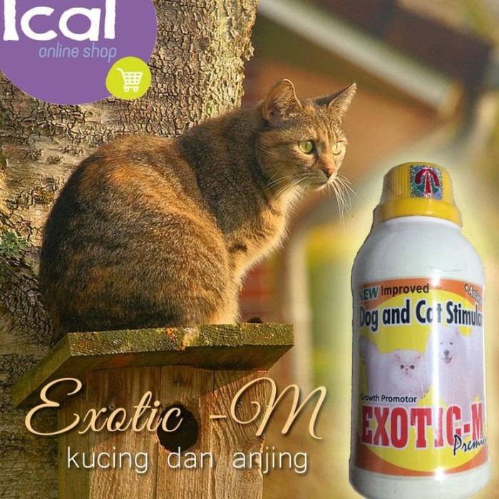 Jual Vitamin Kucing Anjing Exotic M Suplemen Aman Buat Ibu Hamil Menyusui Kab Cirebon Micky Matjar Tokopedia