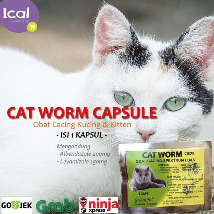 cipro prescription for uti