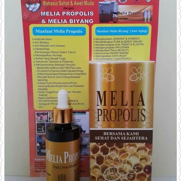 khasiat melia propolis untuk diabetes