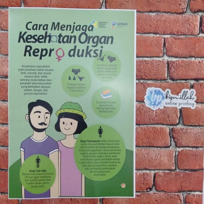 Jual Poster Kesehatan Organ Reproduksi Kota Surabaya De Nuno S Tokopedia