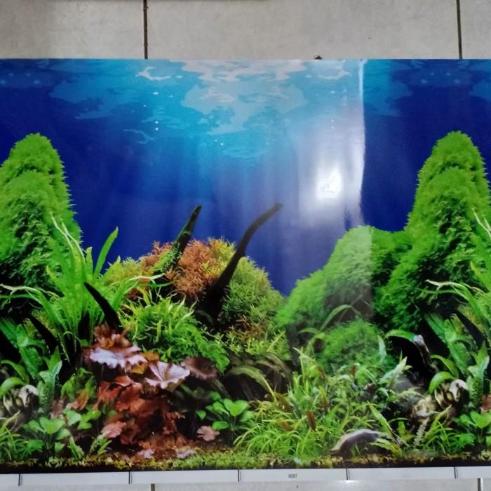 Download 510 Koleksi Background Hitam Aquascape Gratis Terbaru