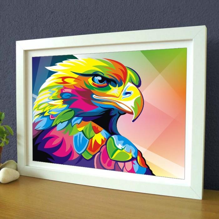 58+ Gambar Burung Elang Dan Warnanya Terbaru