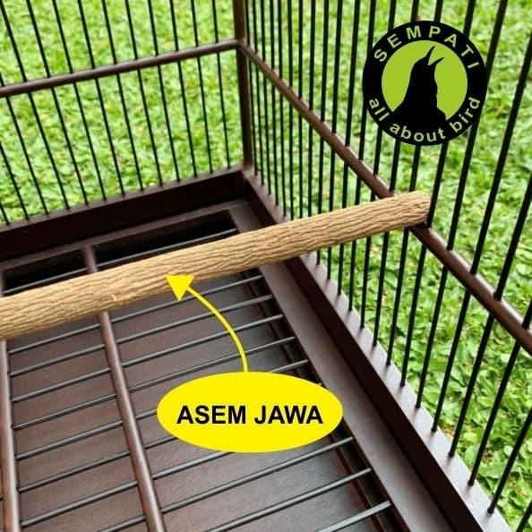 Foto Produk TANGKRINGAN PANGKRINGAN KAYU ASEM JAWA PANJANG SUPER / PREMIUM GRADE A dari Sempati Bird Shop