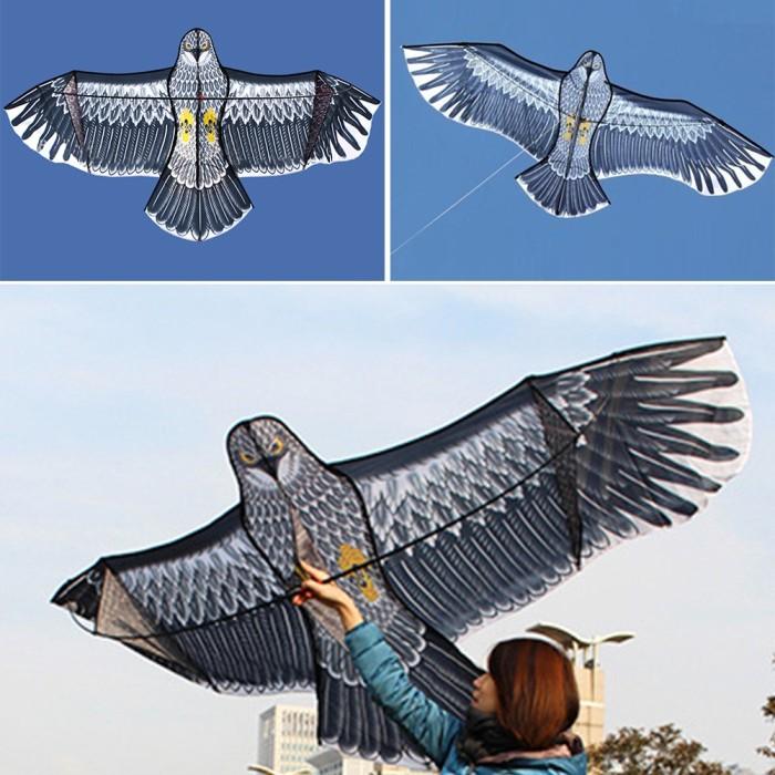75+ Gambar Burung Elang Pakai Pensil HD Terbaik