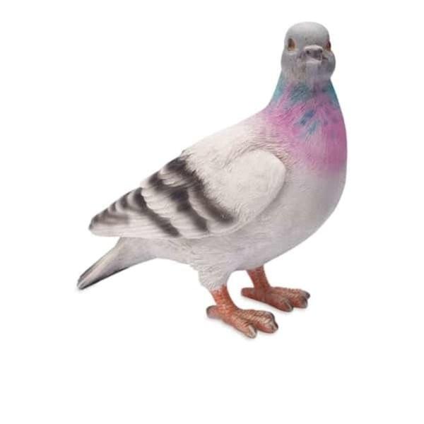 Unduh 45  Gambar Burung Merpati Bawa Surat  Paling Keren