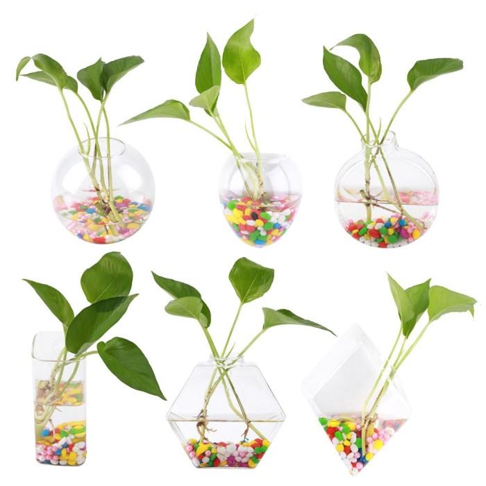 Jual Hanging Tanaman Bunga Kaca Vas Dinding Hidroponik Aquarium Kontainer Kota Bandung World Online Tokopedia