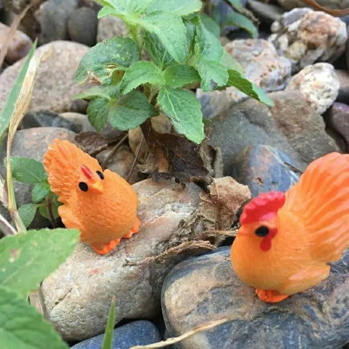 Jual Miniatur Sepasang Ayam Jantan Ayam Betina Kota Tangerang Kosmetik Murah Tokopedia