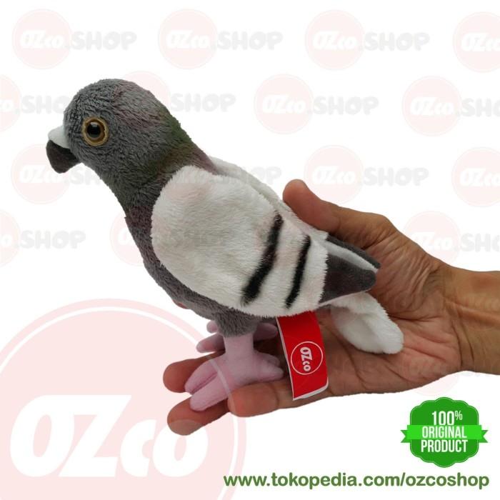 74+ Gambar Hewan Burung Dara Gratis