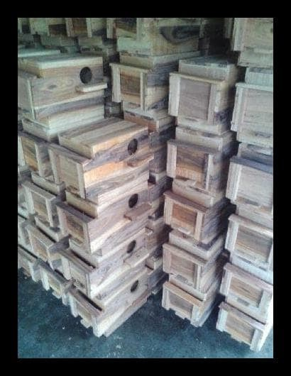 Jual Glodok Kaca Lovebird Jakarta Selatan Bom Toko Tokopedia